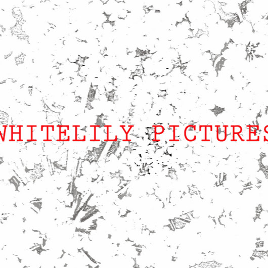 WhiteLily Pictures